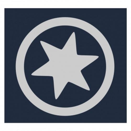 Little Star: Reflective Iron On