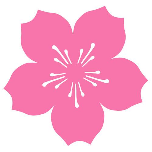 Cherry Blossom Car Magnet