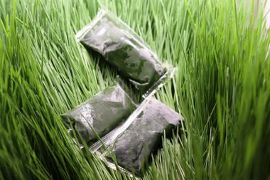 Frozen wheatgrass shots, looks darker green than the grass.  Wow that is some super chlorophyll