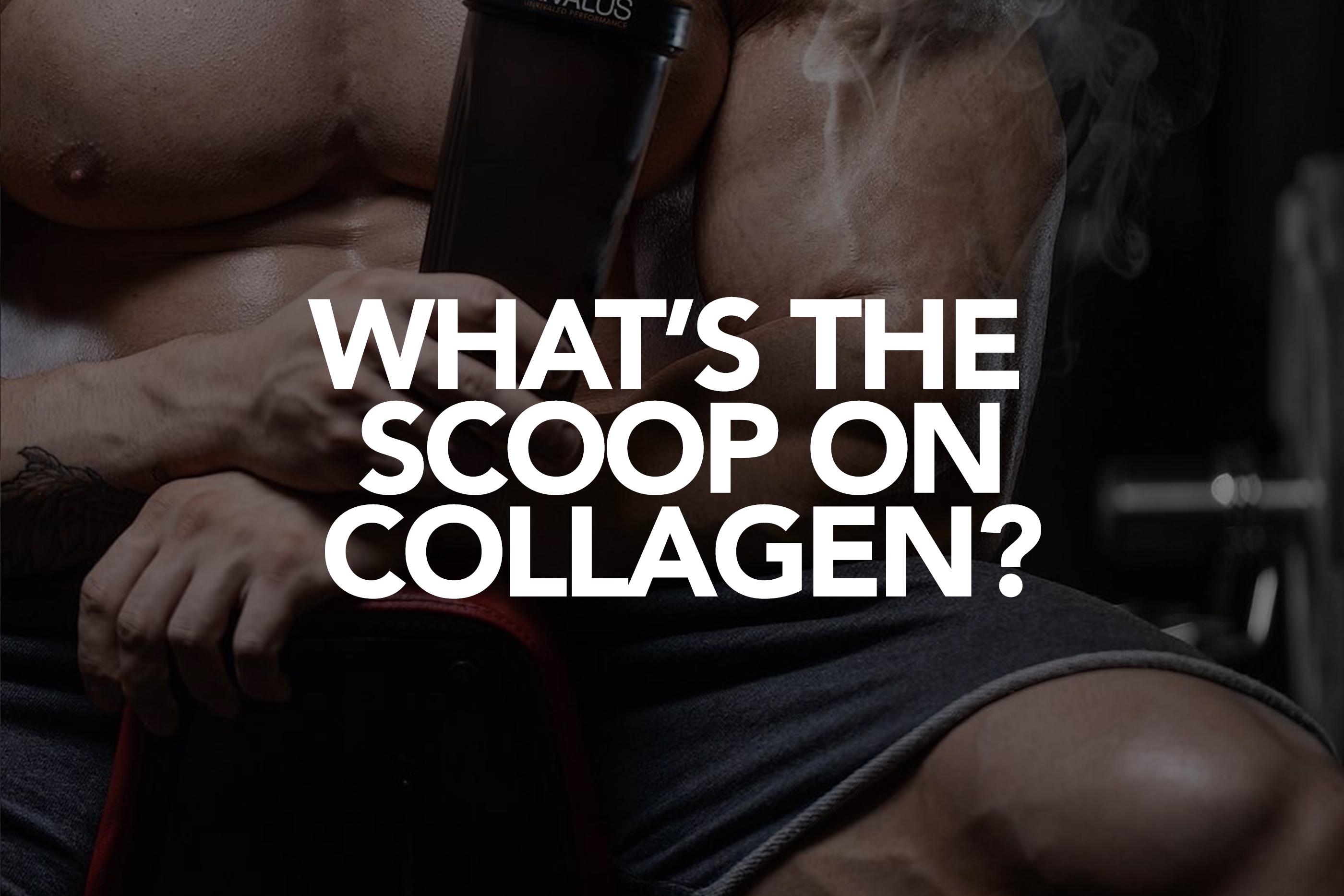 THE SCOOP ON COLLAGEN