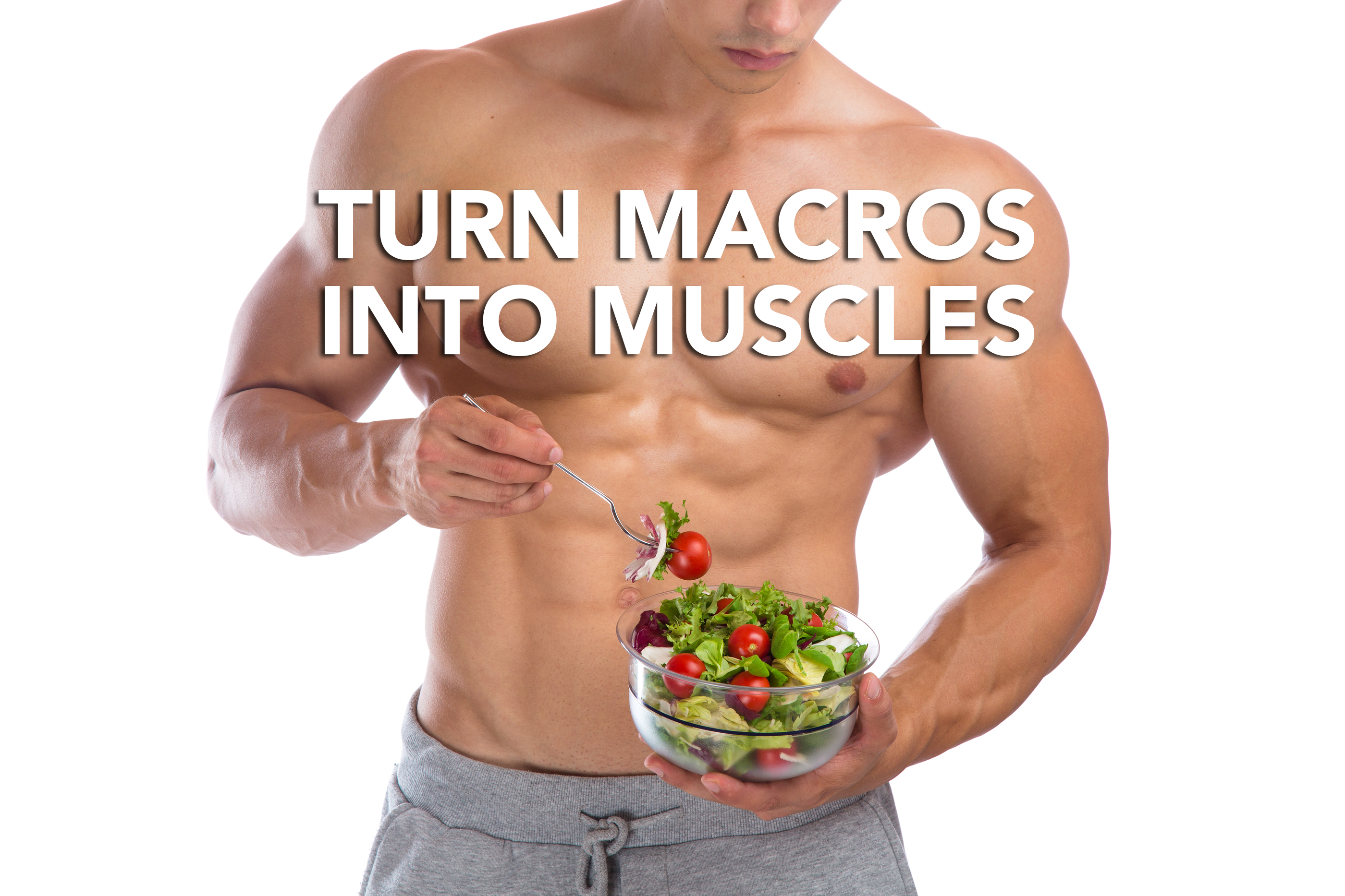 Turn Macros Into Muscles