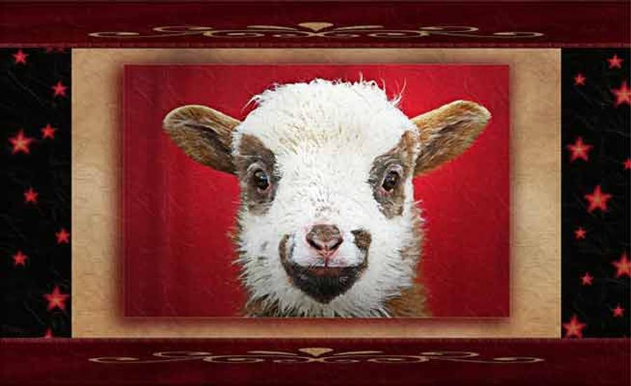 sheepish smile greeting cards by vickie close farm diggity