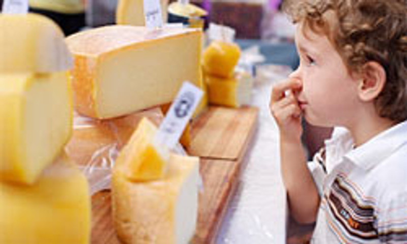 Attraction of Smelly Cheese?