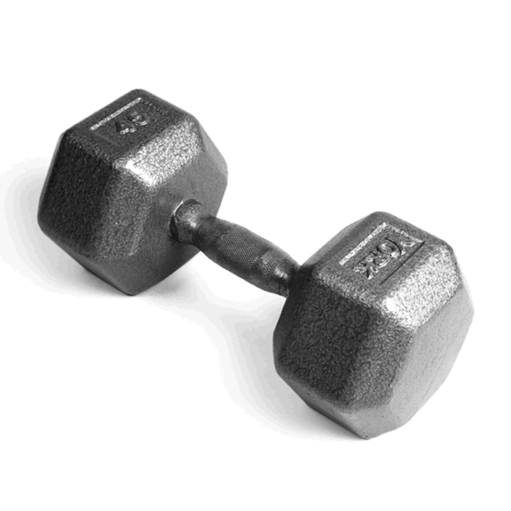 York Barbell Cast Iron Dumbbell