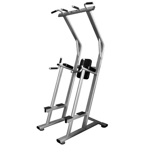 TAG Commercial Vertical Knee Raise/Pull Up/Dip Station