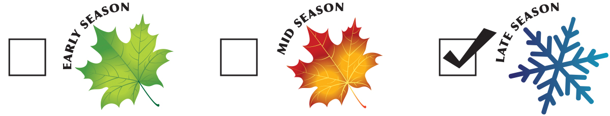 season-late.jpg