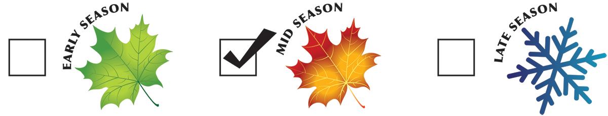 season-mid.jpg