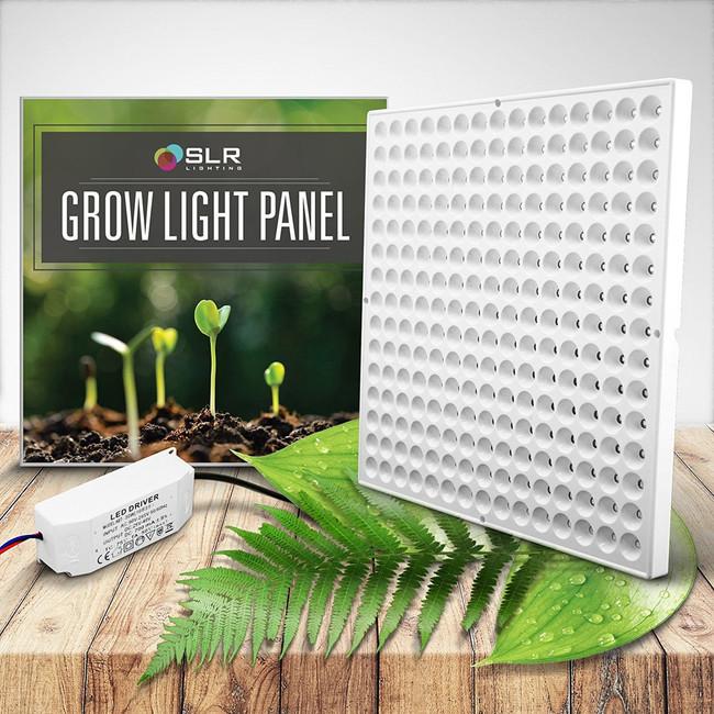 indoor plant accessories