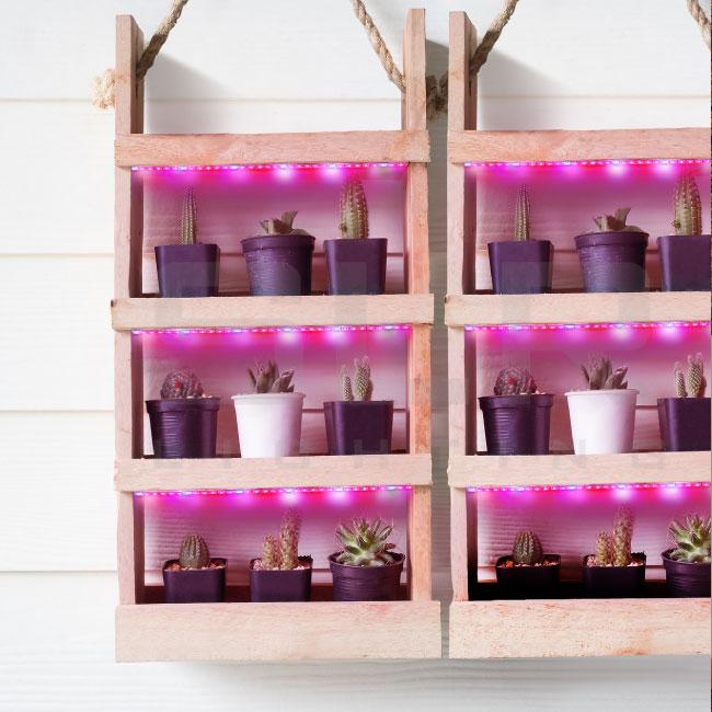 LED plant growing lights