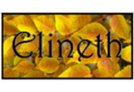 Elineth Books