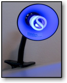 13 Watt desktop uv black light.