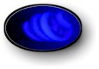 Black light blue thirteen watt UV bulb.