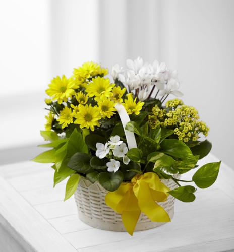 A Bit of Sunshine Basket Flowers Long Island