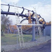 Werner D1500-2 Series Extension Ladder 300 lb rated