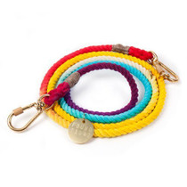 Found My Animal Prismatic Ombre Cotton Leash