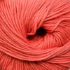 Cascade 220 Superwash Wool Yarn - 827 Coral
