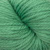 Cascade 220 SuperWash Sport - 267 Green Spruce