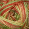 Cascade Cherub Aran Yarn - 522 Spring
