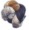 Araucania Huasco Sock Hand Paint - Toco Toucan 1003 colors remind me of University colors.  A solid navy, an old gold all elevated with natural.