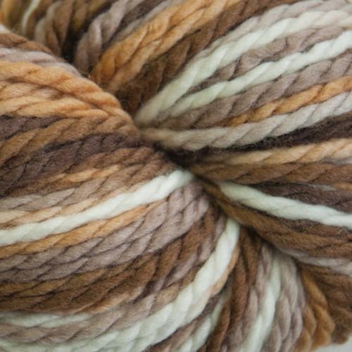 Cascade 128 Superwash Multi Browns #107