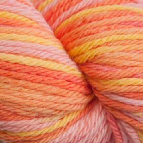 Cascade 220 SuperWash Sport Wool Yarn - 106 Citrus Multi