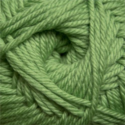 Cascade 220 Superwash Merino - Green Tea 17