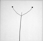 Harry Callahan: Photographs, First Edition, Limited to 1500