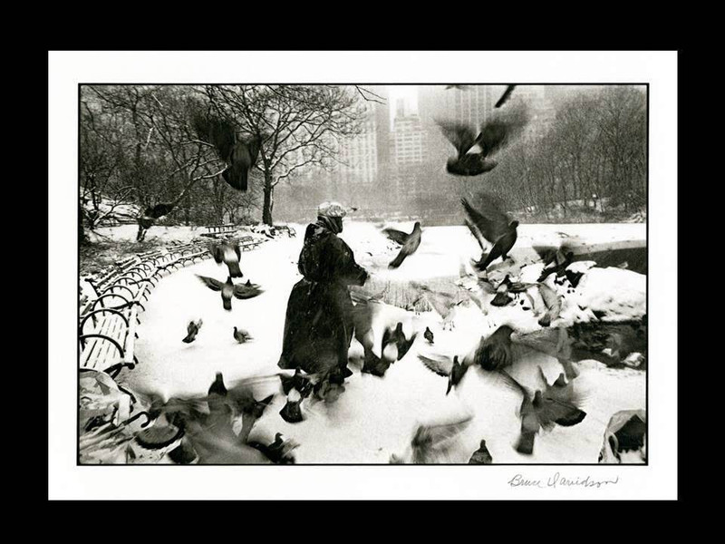 Bruce Davidson: Woman at the Pond, Central Park, Signed Platinum Print