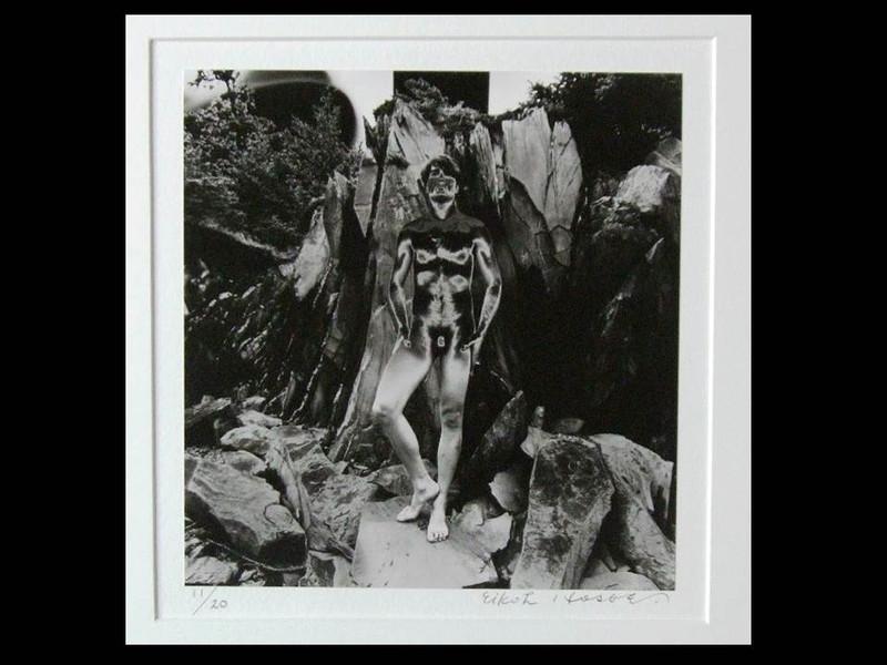 Eikoh Hosoe: Shadow of a Bodhi Tree, Signed Silver Gelatin Print