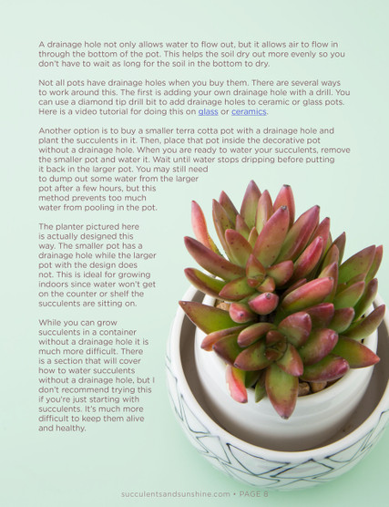 how to water succulents an in depth guide e book mountain crest gardens. Black Bedroom Furniture Sets. Home Design Ideas