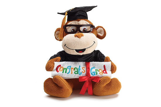 Graduation Monkey with Diploma