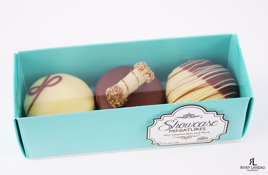 Chocolate Covered Cheese Minis-3 Piece