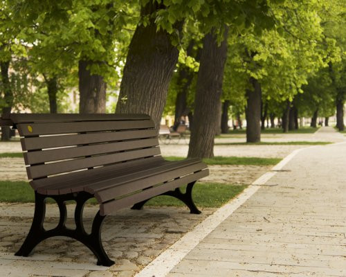 6' Notre Dame Bench with Backrest