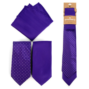 Dots & Solid Purple Microfiber Poly Woven Two Ties & Hanky Set - TH2X-PUR1