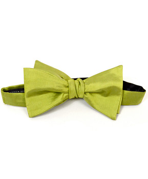 Silk Woven Freestyle Bow Tie FBS4708