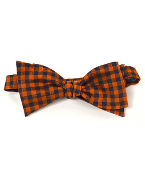 Silk Woven Freestyle Bow Tie FBS4709
