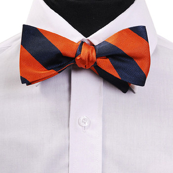 Men's Silk Woven Freestyle College Bow Tie FBS3410