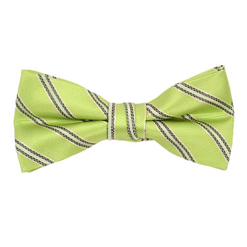 "Boy's 2"" Green Striped Polyester Woven Banded Bow Tie FBB16"