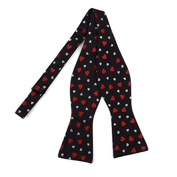 Silk Novelty Freestyle Bow Tie FBS3609