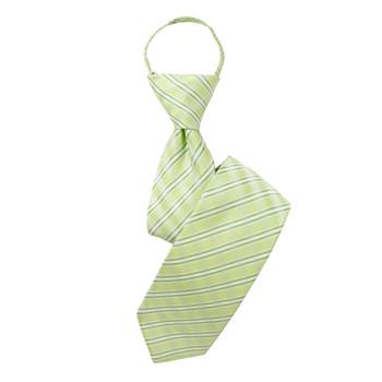 "Boy's 17"" Striped Light Green Zipper Tie"