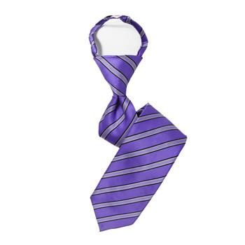 """Boy's 14"""" Striped Purple Zipper Tie"""