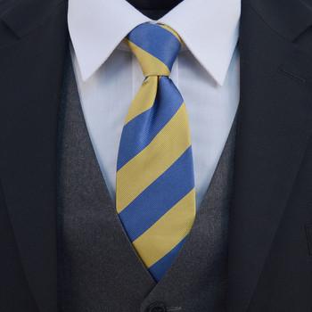 "Boy's 17"" Silk Zipper College Tie BSCZ2400"