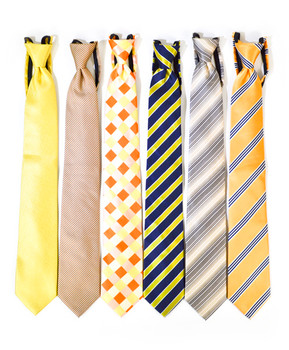 6pc Assorted Men's Micro Woven Zipper Ties MPWZ5340