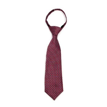 "Boy's Burgundy Dots Zipper Tie 11"" - MPWZ11-BUR1"