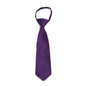 """Boy's Purple Dots Zipper Tie 11"""" - MPWZ11-PUR1"""