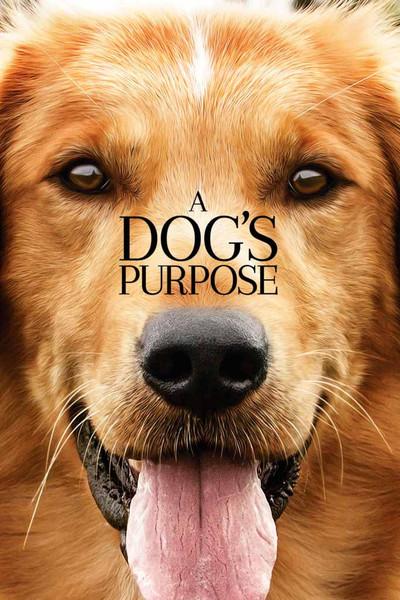 A Dog's Purpose [UltraViolet HD]