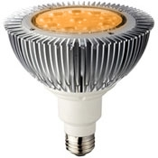 15 Watt High Output Amber LED PAR38 With Medium Base - FWC Wildlife Lighting Certified
