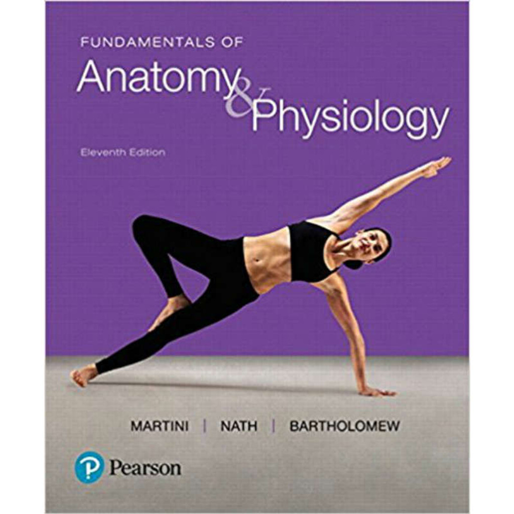 Ungewöhnlich Anatomy And Physiology Martini 11th Edition Fotos ...