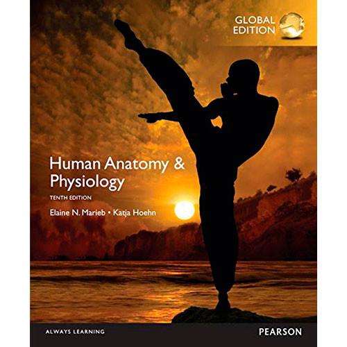 Human Anatomy Physiology 10th Edition Marieb 9781292096971