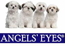 Angels' Eyes